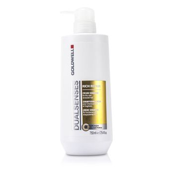 Goldwell Dual Senses Rich Repair Shampoo (For Dry, Damaged or Stressed Hair)