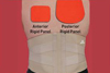 AP Rigid Lumbar Support 5XL