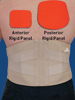 AP Rigid Lumbar Support Extra Small