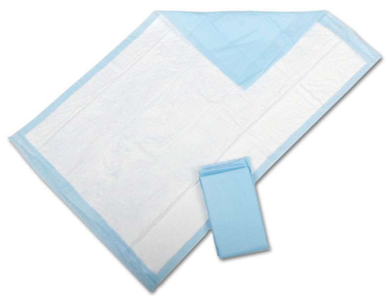 Protection Plus Deluxe Disposable Underpads, 23x36, 25/bg (case of 6 bg)